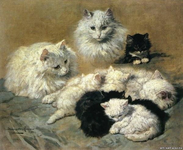Julian Castle Cat S Cradle