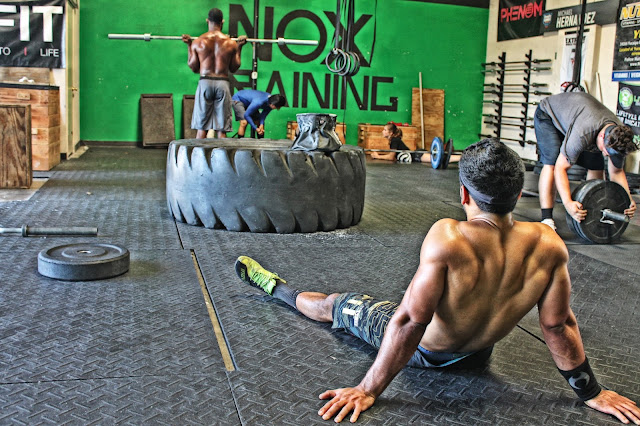 NOX Training