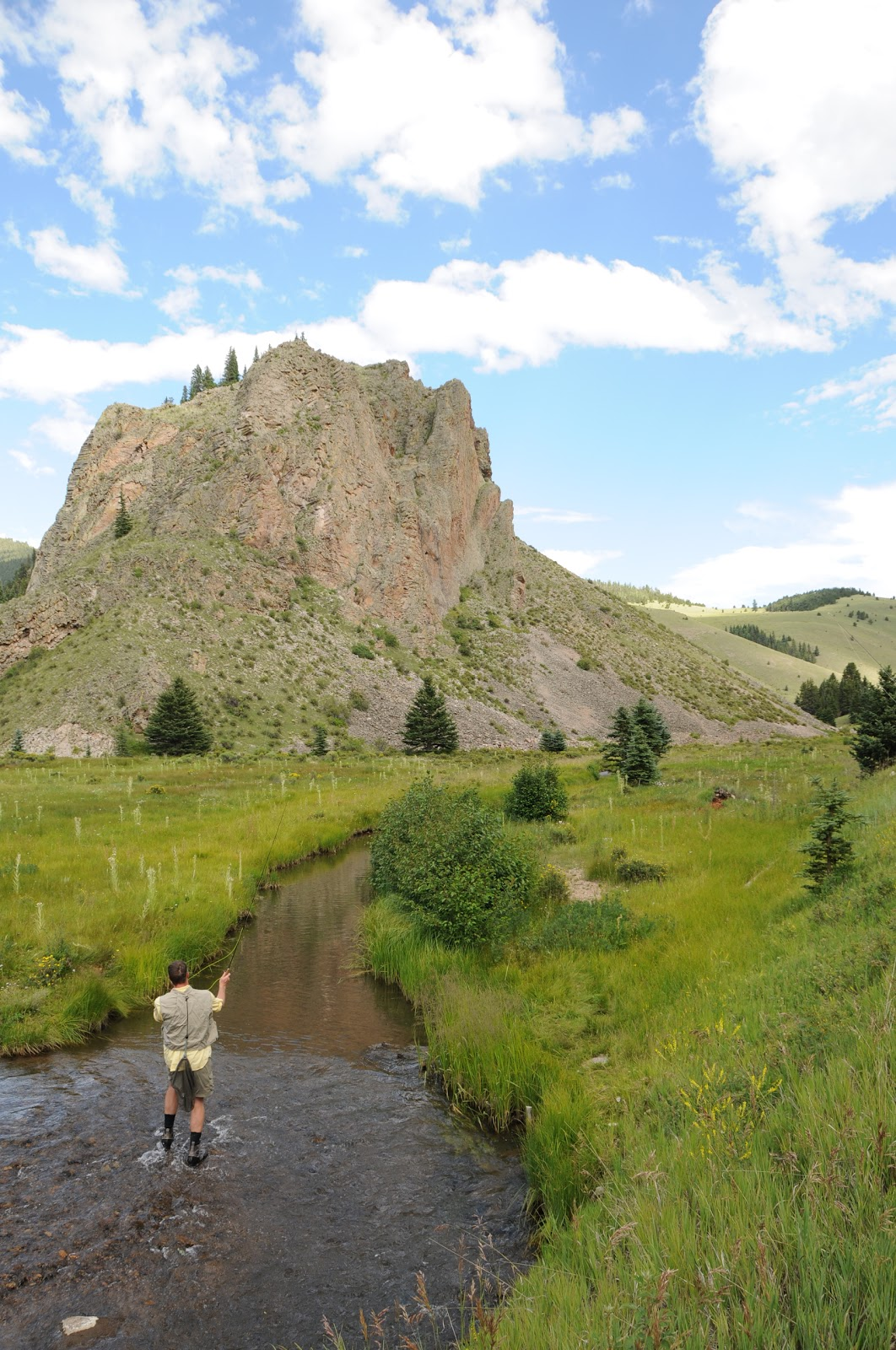 Flyfishing valle vidal new mexico for Fly fishing new mexico