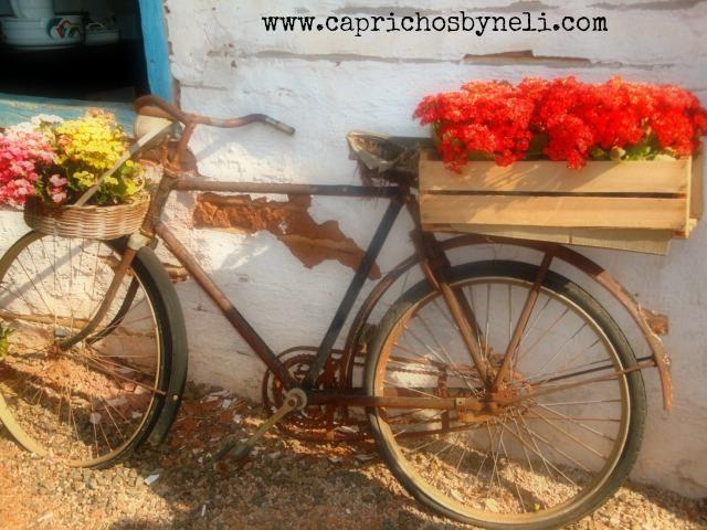Objetos antigos na decoração, bicicleta antiga, flores
