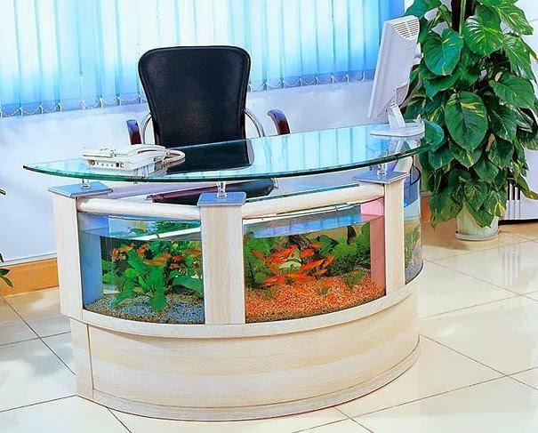 What a wonderful creative aquariums ideas?