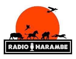 Click Here to Listen to Radio Harambe