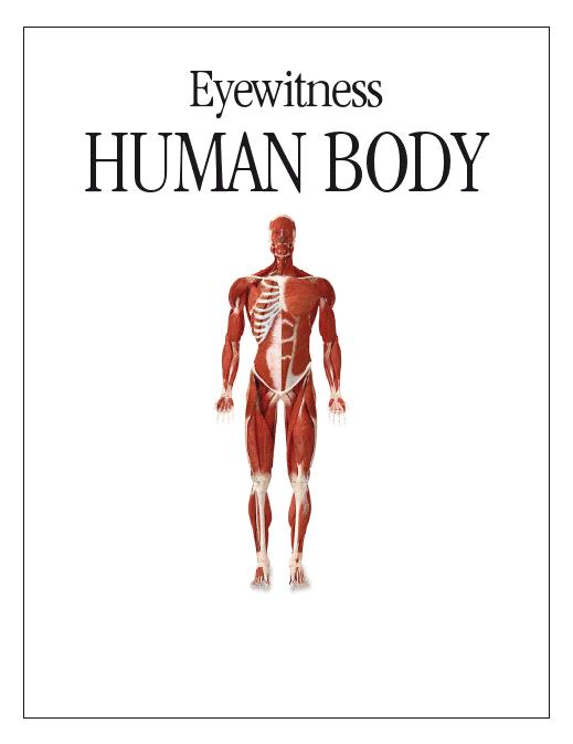General anatomy of human body