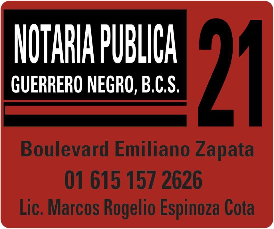 Notaria Publica 21