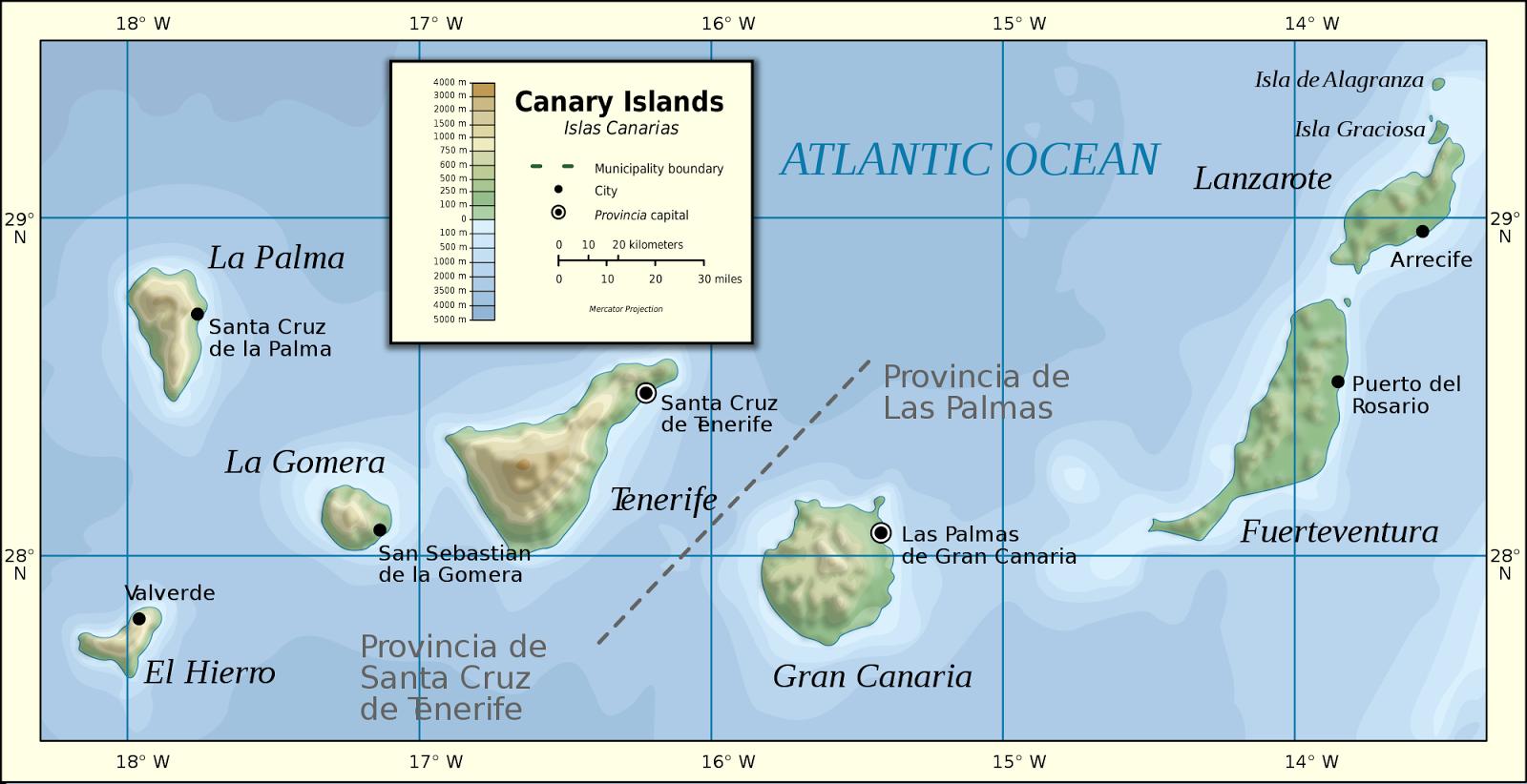 Descubriendo hojas paisaje de macaronesia i gran canaria - Islas canarias con ninos ...