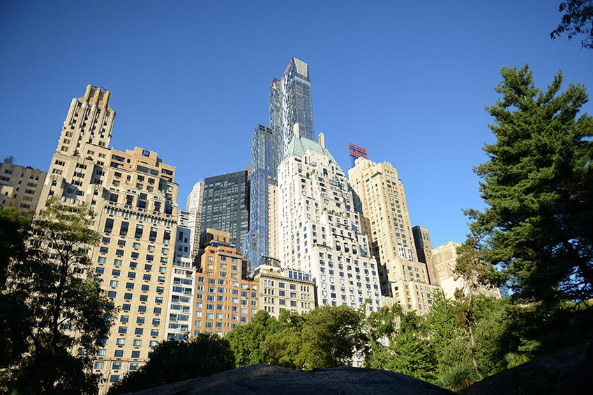 the petticoat photo diary new york friend of mine zara sirographics central park views