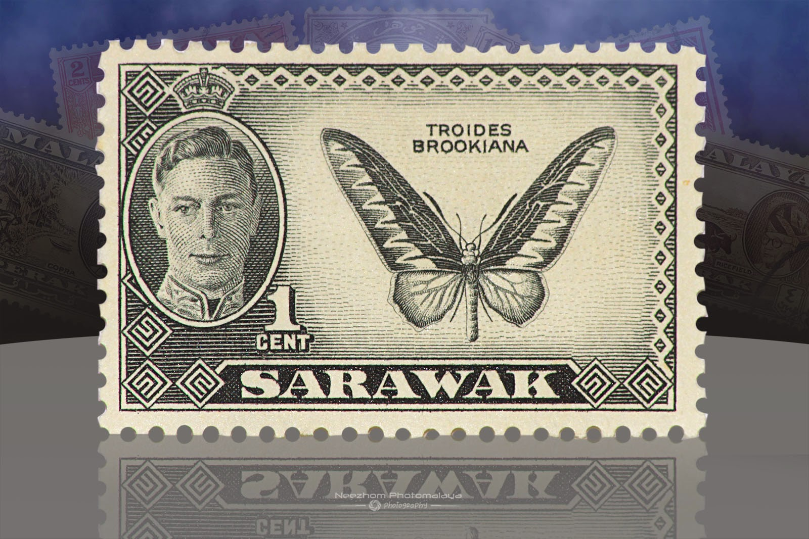 Setem Sarawak 1 Cent Troides Brookiana 1950