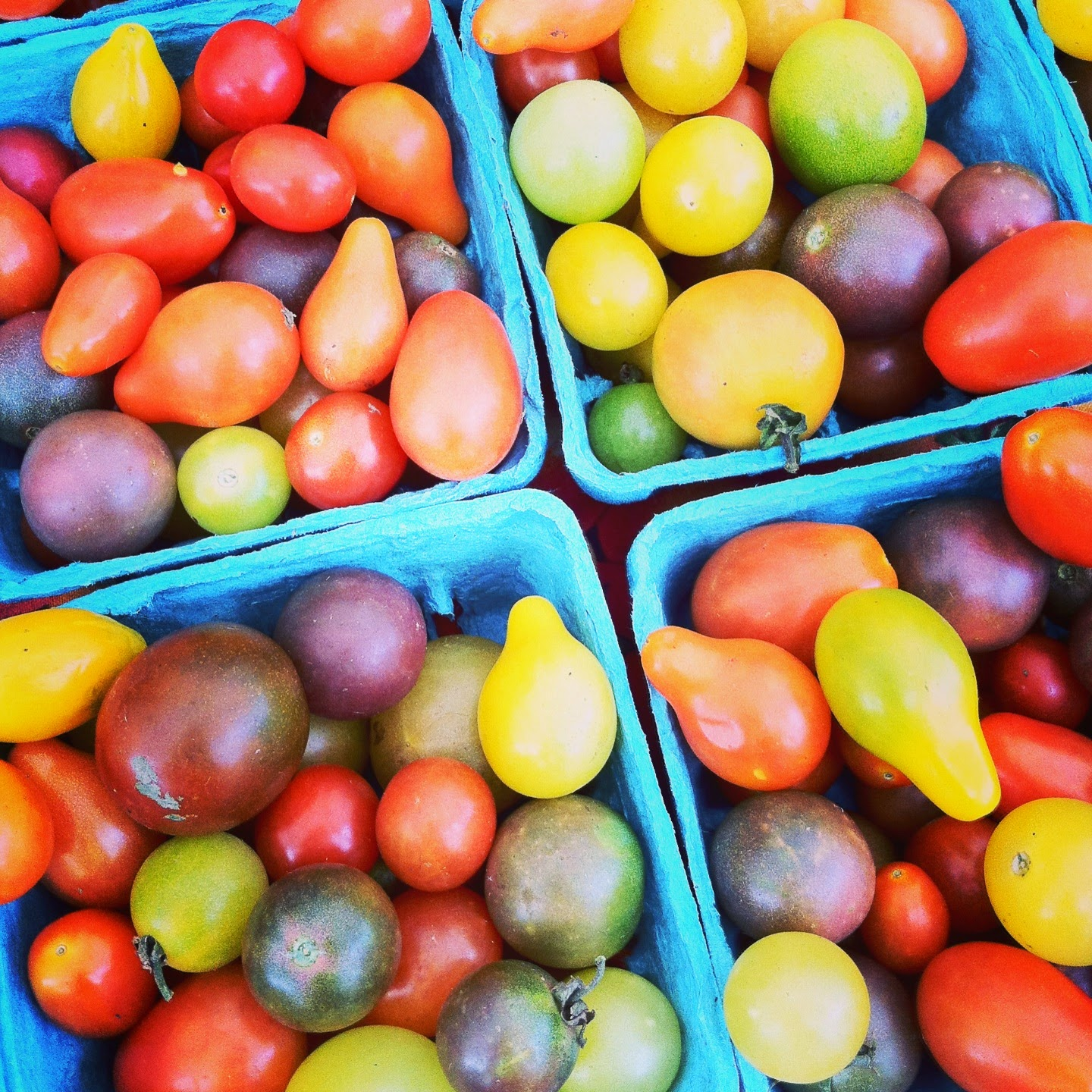 is fruit shoot healthy tomato vegetable or fruit