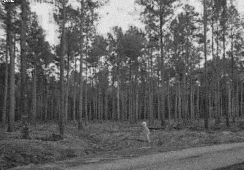 EXTRATERRESTRE APARECE EN FOTOGRAFIA DE 1930