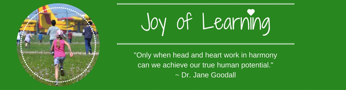 Joy of Learning