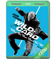 WILD CARD (2015) WEB-DL 720P HD MKV INGLÉS SUBTITULADO