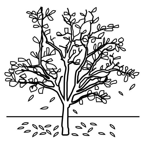 dibujos de arboles de oto o para pintar imagui