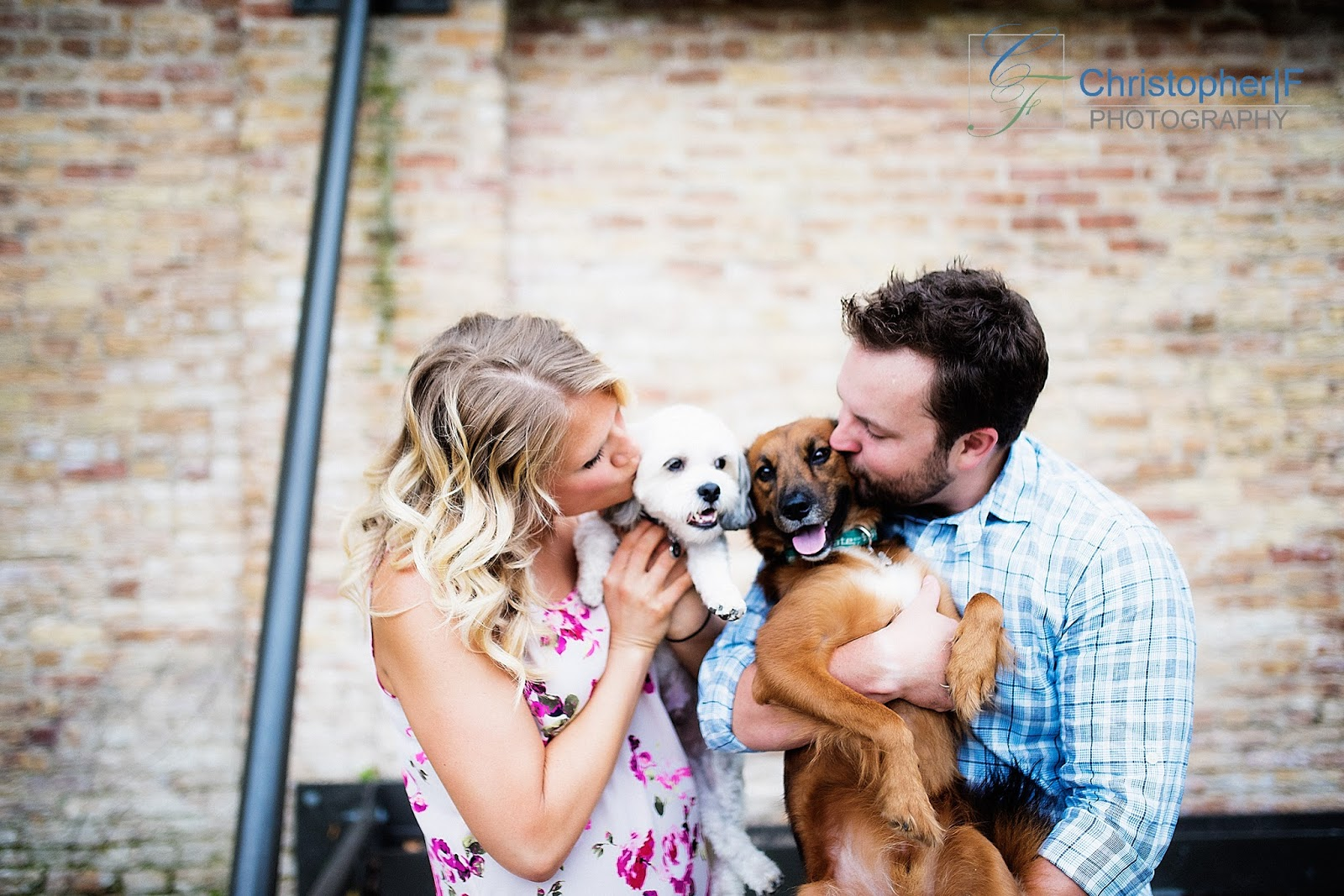 Chicago Engagement Photo Dogs Nikon D810