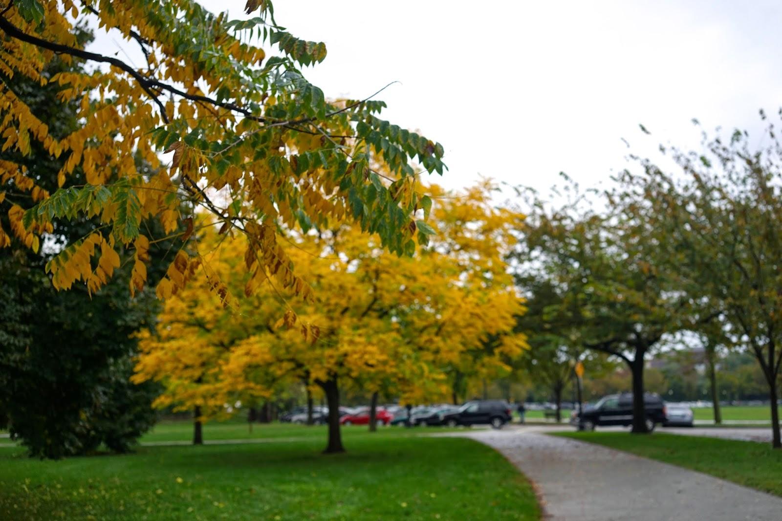washington d.c park