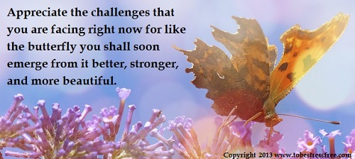 motivational-quotes-on-challenges