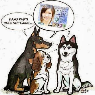 DP BBM Kocak Anjing
