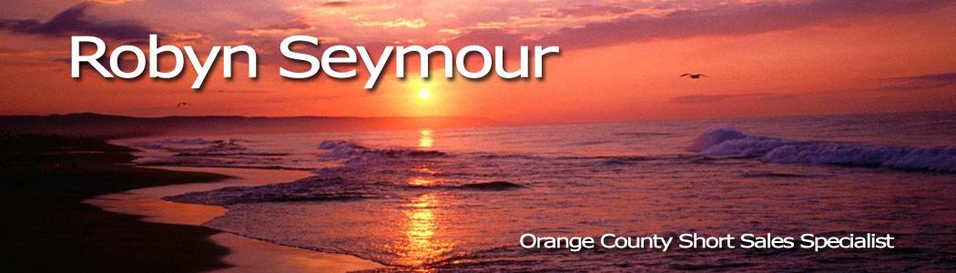 Robyn Seymour's Blog