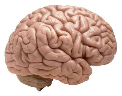 Tips Menjaga Kesehatan Otak