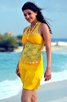 kajal agarwal hot wallpapers.jpg