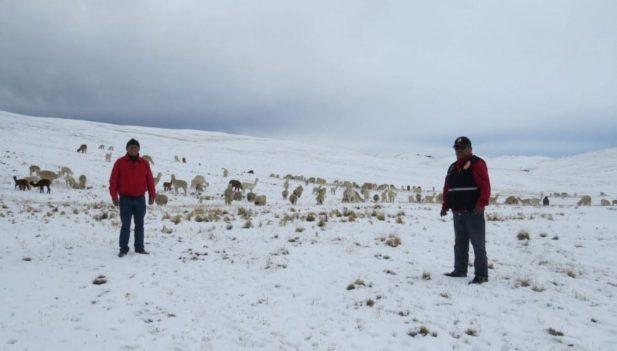 Minsa declaró en emergencia a 14 regiones por intenso frío Entre ellas se encuentra Cusco y regione