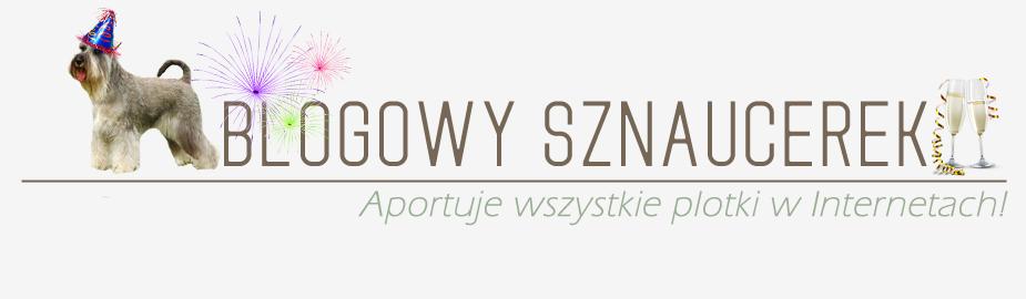 Blogowy Sznaucerek