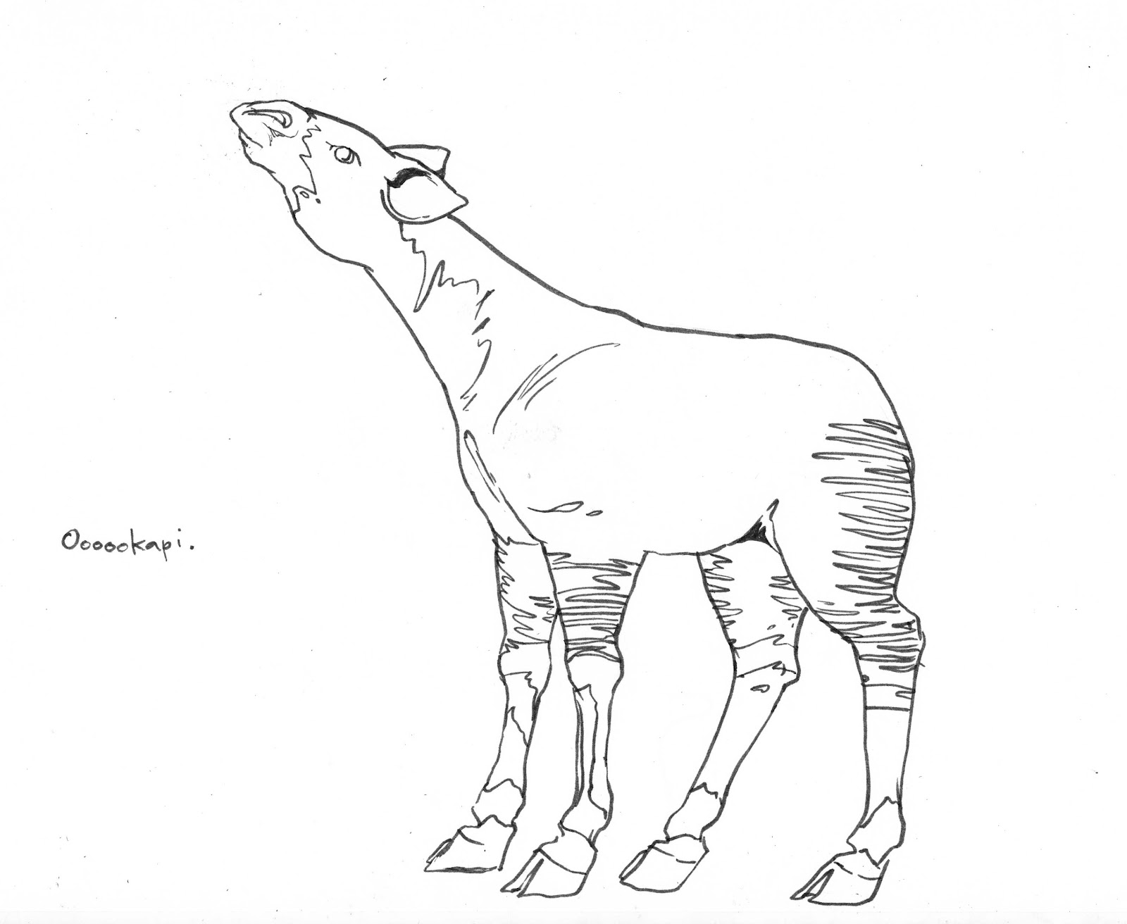 Brush quibblies april 2012 for Okapi coloring page