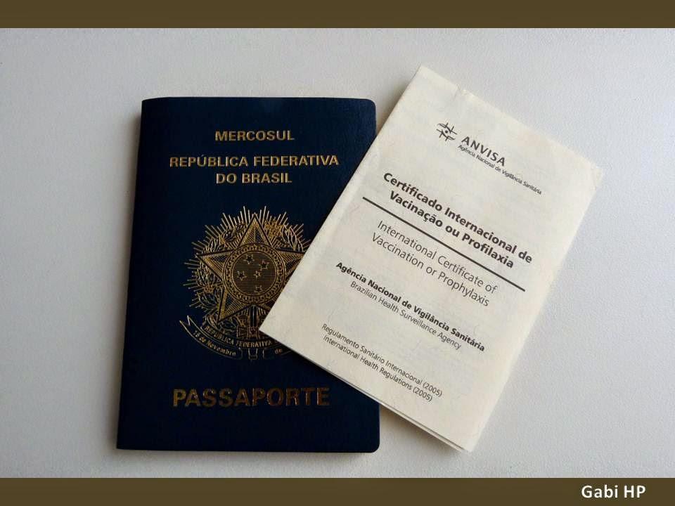 Devaneios de Biela certificado de vacina internacional