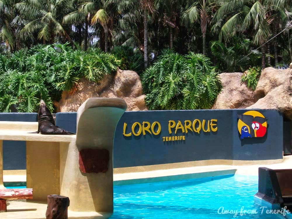 Loro Parque Tenerife