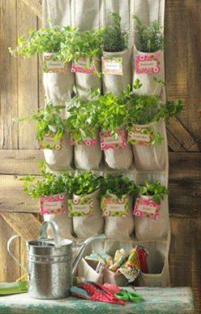 Ambientes decorar com ervas arom ticas interior - Plantas aromaticas interior ...