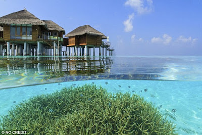 BBC Travel cites a Maldives you can actually afford