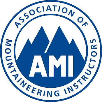 Full Member of the AMI