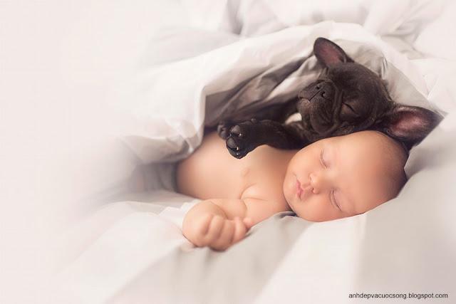 Ảnh Baby và con cưng