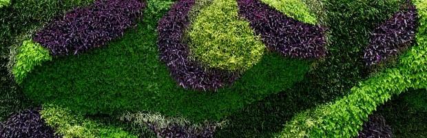 diseño - instalación - jardines verticales - muros verdes - playa del carmen - cancún - méxico
