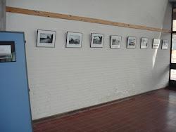 exposiciÓn  FOTOGRÁFICA : MARCELO PUGLIA EN EL DAU - MAYO 2011