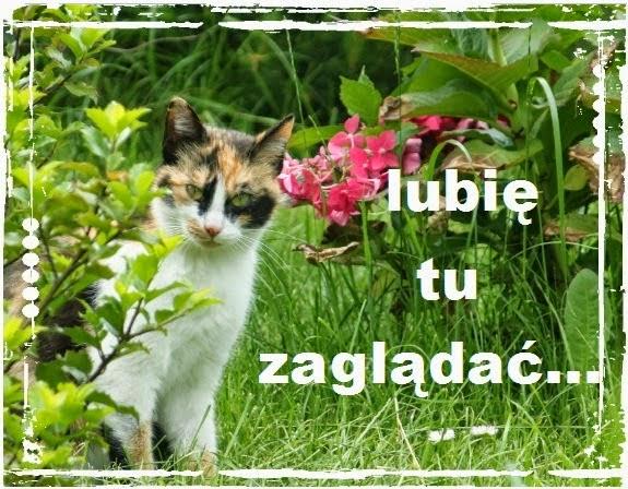 http://dorotamakota.blogspot.com/2014/07/nadrabiam-zalegosci-wyroznienia.html