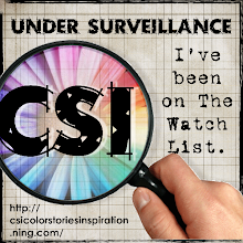 CSI #4