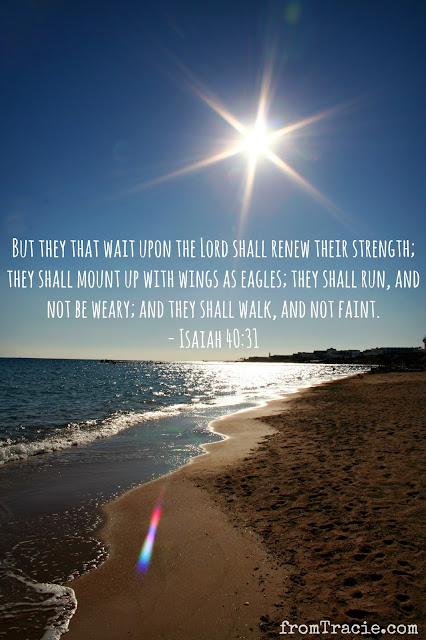 Isaiah 40:31 Wait Upon The Lord