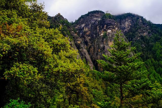 Paro Taktsang / Tiger's Nest Monastery