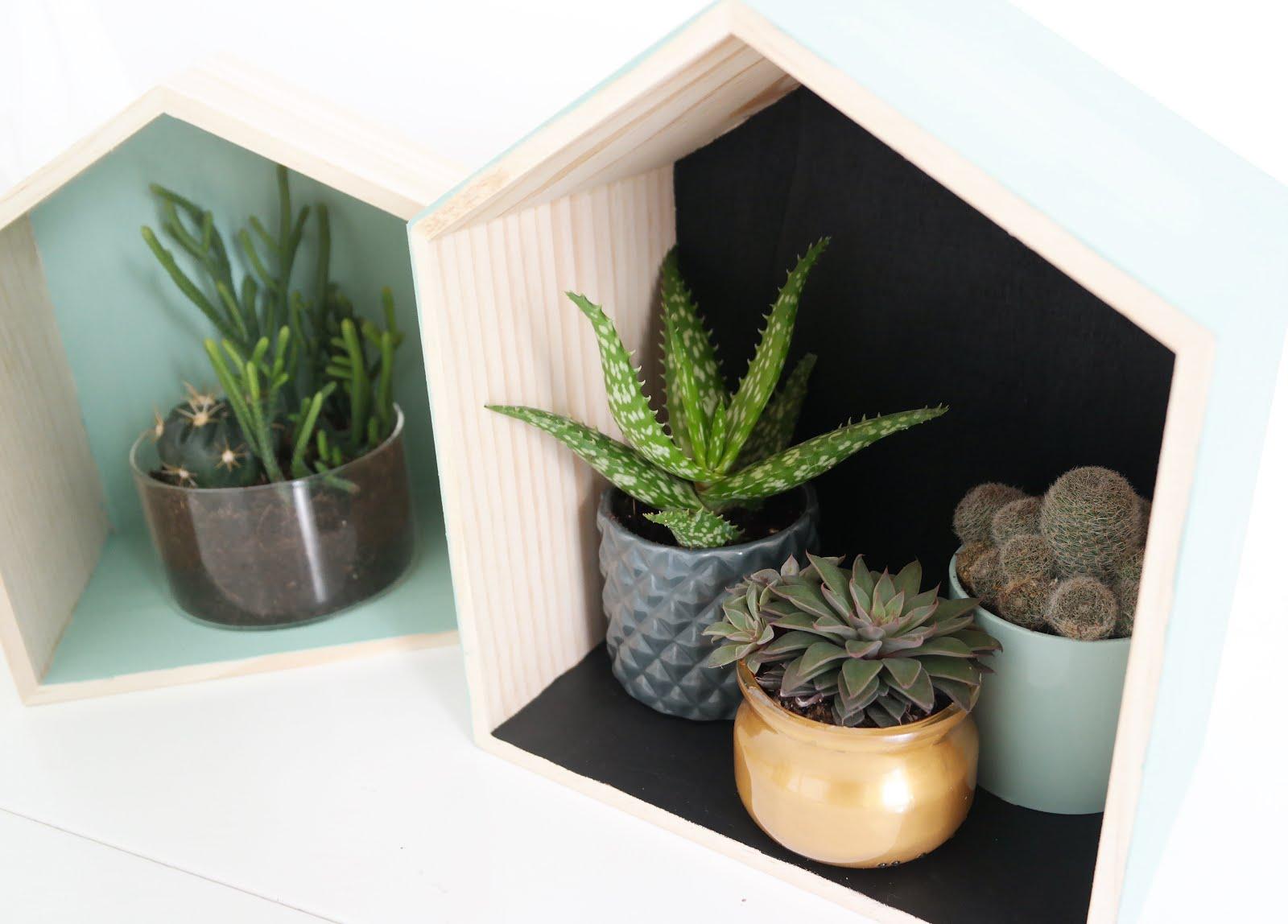 diy - les maisons des cactus - shylylovely