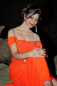 Shilpi Sharma Photos at Green Signal Audio-thumbnail-12