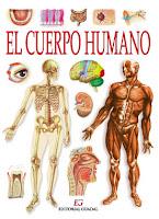 http://www.salonhogar.com/ciencias/anatomia/cuerpo_humano/cuerpo_humano.swf