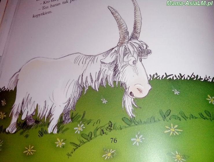 Bajki Krupska - kozy i barany