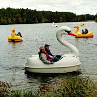 New England Fall Events_Cranberry Harvest Festival Wareham_AD Makepeace_Swan Boats