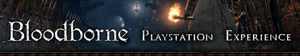 Bloodborne Playstation Experience