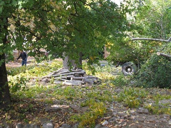 Ρημάξανε το πάρκο στο Κιουπρί