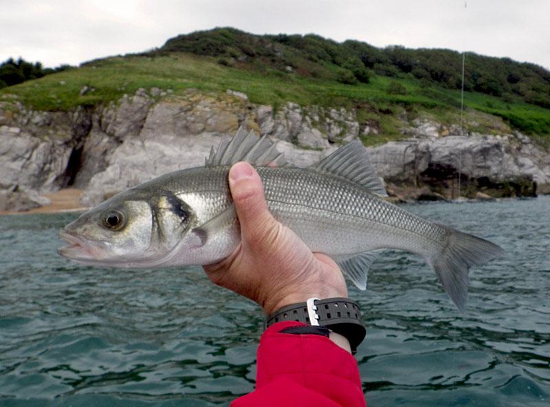 Smells kinda like fish baitcaster set up fishing afloat for I smell like fish