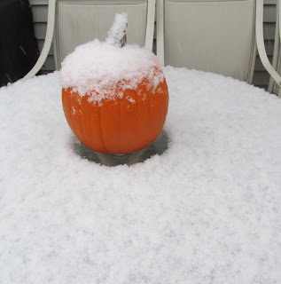 Snow on the Pumpkin