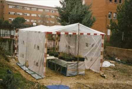 invernadero huerta: