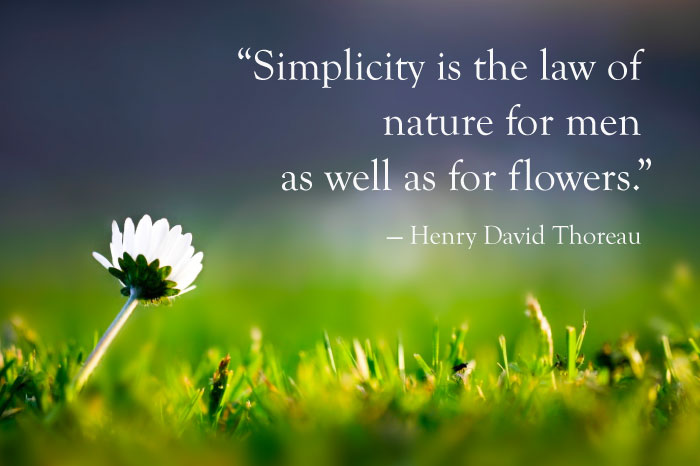 the beauty of simplicity in walden a book by henry david thoreau Walden by henry david thoreau time period: walden throughout the book, thoreau is constantly reminding us of the beauties of nature simplicity, and i may.