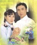 หนังจีนชุดหมวด ฝ-ฟ